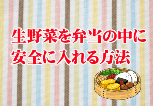 【調理師直伝】お弁当の中に生野菜を入れるポイントとコツ!