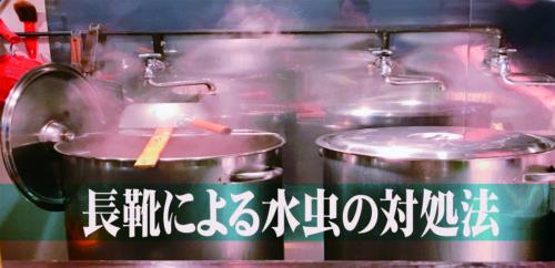 【長靴と水虫】飲食店の現場は白癬菌との闘い!クリームを塗ろう!